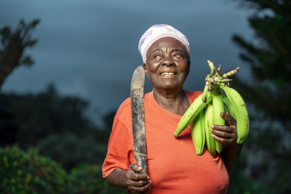 image of african aged woman, with farm produce and a tool- agricultural concept